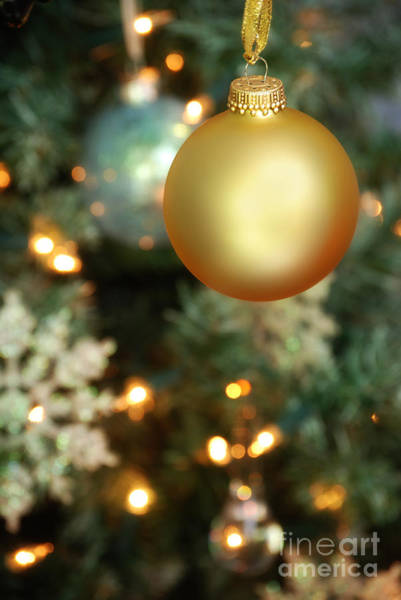 Evergreen Trees Photograph - Christmas Ornaments by HD Connelly