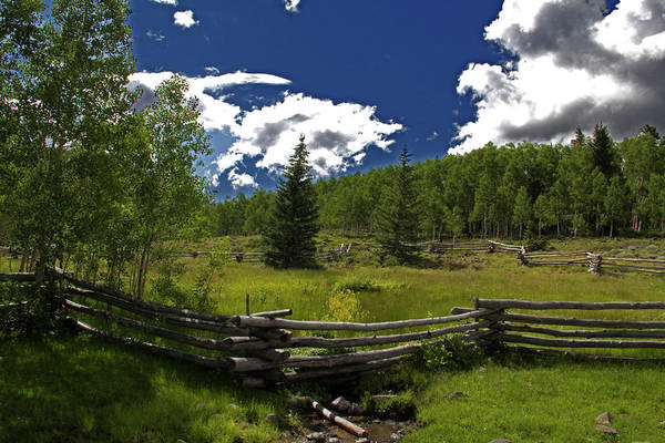 Photograph - Rocky Mountains by Mark Smith