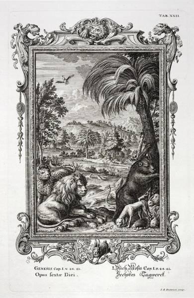 Creationist Wall Art - Photograph - 1731 Johann Scheuchzer Creation 6th Day by Paul D Stewart