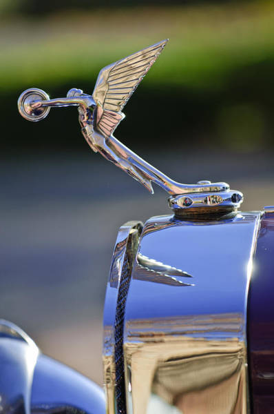 Photograph - 1927 Isotta-fraschini Tipo 8a Boat-tail Tourer Hood Ornament by Jill Reger