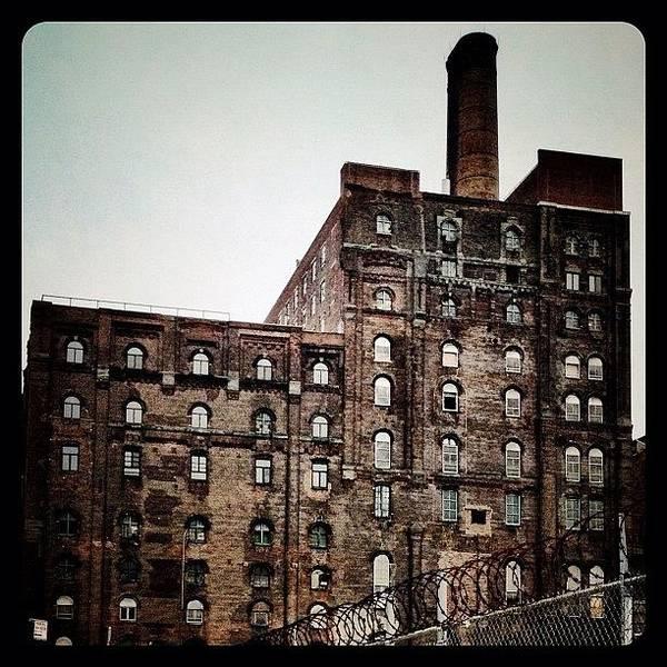 Wall Art - Photograph - Abandoned Factory by Natasha Marco