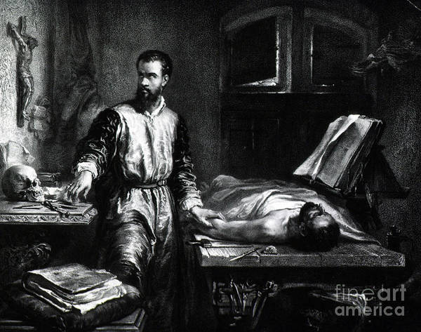 De Humani Corporis Fabrica Photograph - Andreas Vesalius, Flemish Anatomist by Science Source