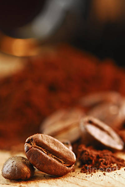 Life Photograph - Coffee Beans And Ground Coffee by Elena Elisseeva