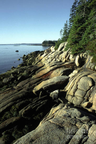 Photograph - Deer Isle And Barred Island by Thomas R Fletcher