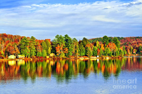 Photograph - Fall Forest Reflections by Elena Elisseeva