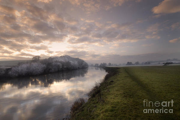 Wall Art - Photograph - Frosty Evening by Angel Ciesniarska