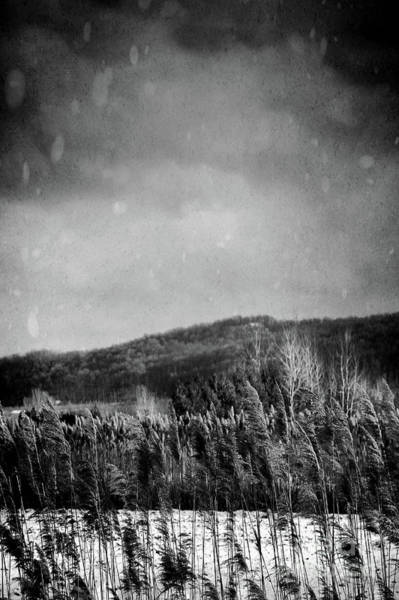 Photograph - Frosty Field In Late Winter Afternoon by Sandra Cunningham