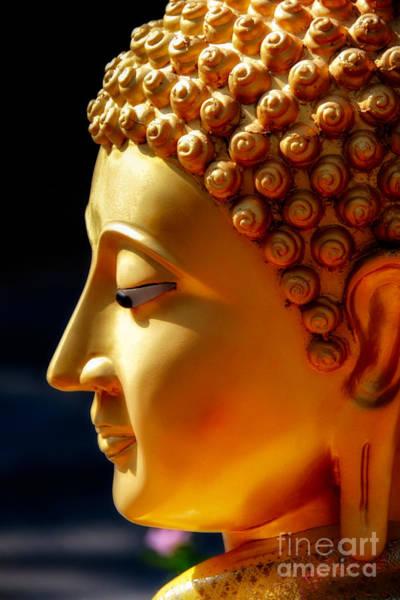 Golden Eye Photograph - Golden Buddha by Adrian Evans