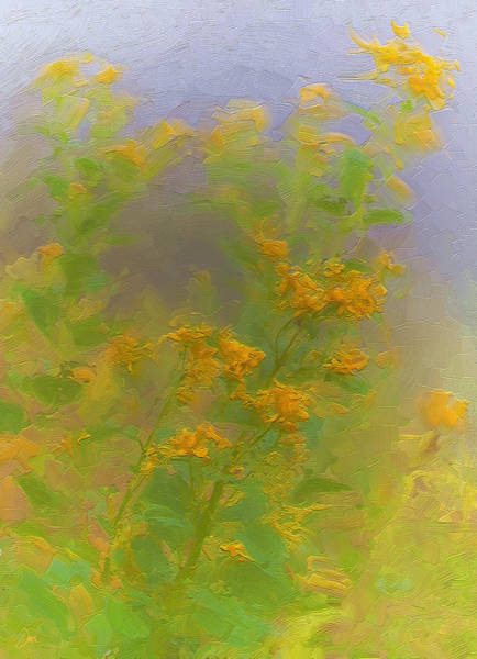 Impasto Photograph - Goldenrod by Ron Jones
