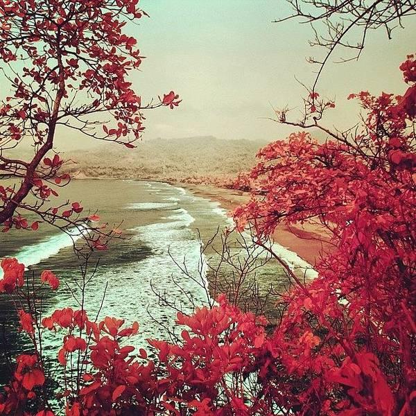 Sea Photograph - Good Morning #sunrise by Tommy Tjahjono