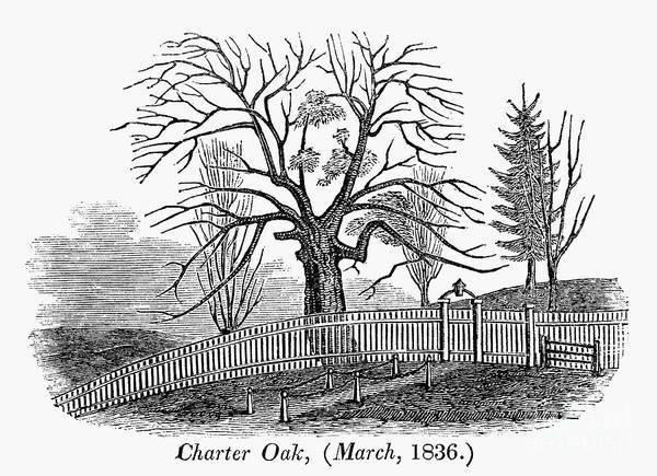 Andros Photograph - Hartford: Charter Oak by Granger