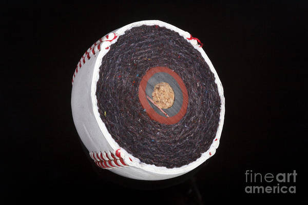 Cowhide Wall Art - Photograph - Inside A Baseball by Ted Kinsman