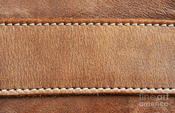 Cowhide Wall Art - Photograph - Leather With Stitching by Blink Images