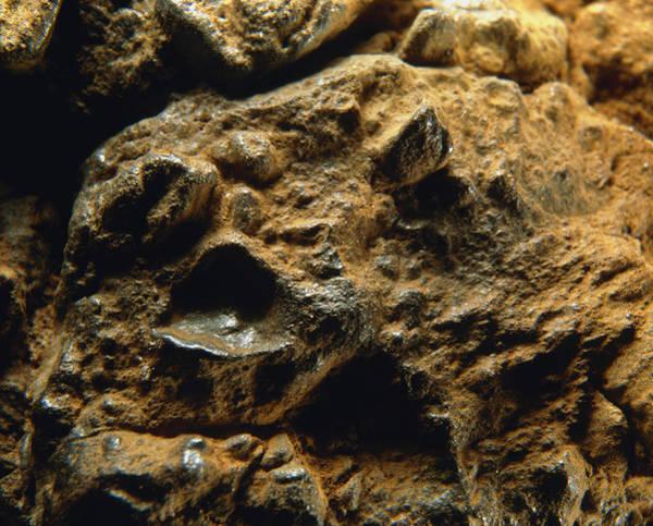 Wall Art - Photograph - Meteorite by Detlev Van Ravenswaay