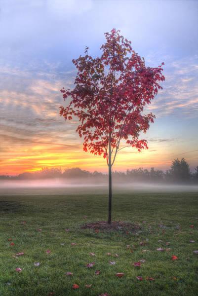 Morning Landscape Art Print