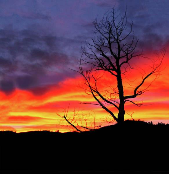 Digital Art - Night Fall In Yellowstone by Gary Baird