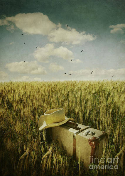 Wall Art - Photograph - Old Suitcase With Straw Hat In Field by Sandra Cunningham