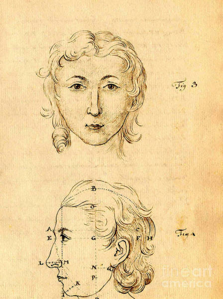Photograph - Physiognomical Illustration Of Human by Science Source