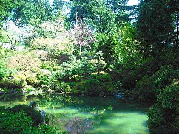 Photograph - Portland Japanese Garden by Kelly Manning