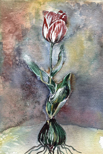 Dutch Tulip Painting - Red Tulip by Mindy Newman