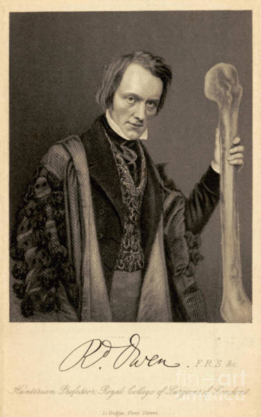 Comparative Anatomy Wall Art - Photograph - Richard Owen, English Paleontologist by Science Source