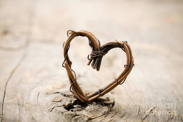 Wedding Photograph - Valentine Heart by Kati Finell