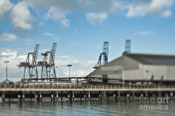 Call Building Photograph - Warehouse And Cranes At A Seaport by Eddy Joaquim