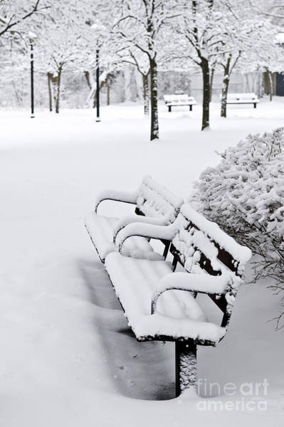 Park Bench Photograph - Winter Park by Elena Elisseeva