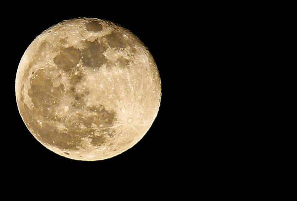 Photograph - 2012 Super Moon by Elizabeth Hart