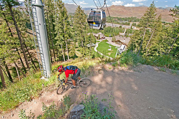 David Weber Photograph - Mountain Bike by Elijah Weber