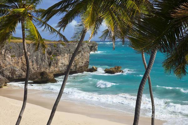Photograph - Bottom Bay Barbados by Brian Jannsen