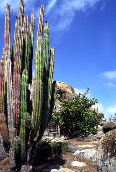 Photograph - Casibari Rock Formations by Thomas R Fletcher