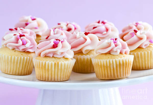 Photograph - Cupcakes by Elena Elisseeva