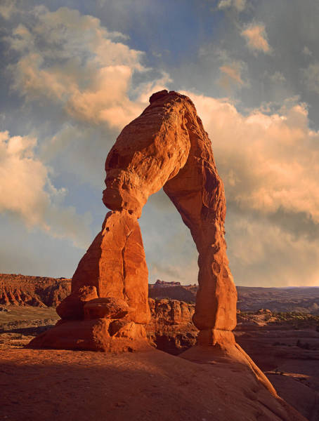 Photograph - Delicate Arch In Arches National Park by Tim Fitzharris