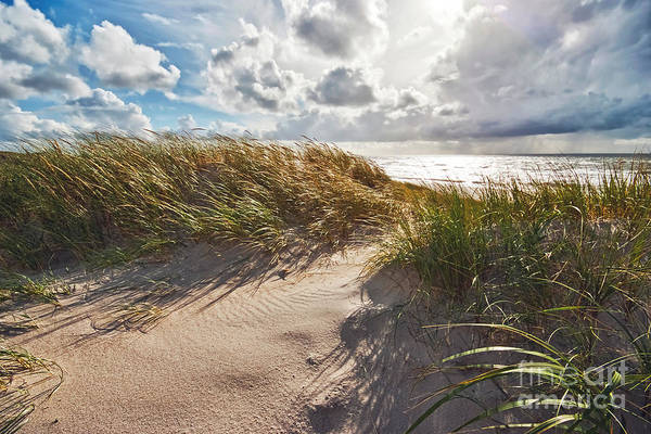 Wall Art - Photograph - Dunes by Wedigo Ferchland