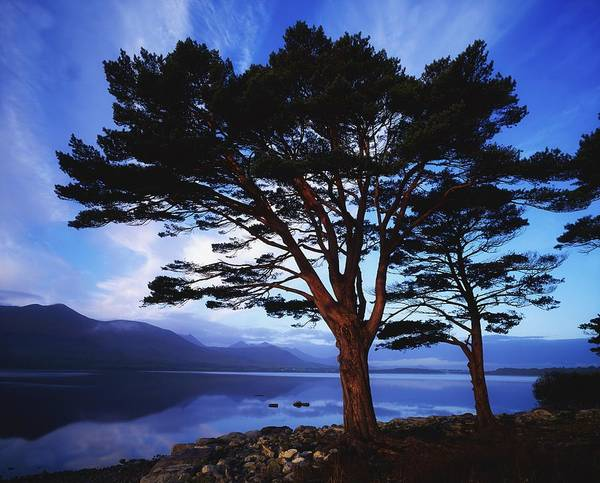 Horizontally Photograph - Lough Leane, Lakes Of Killarney by The Irish Image Collection