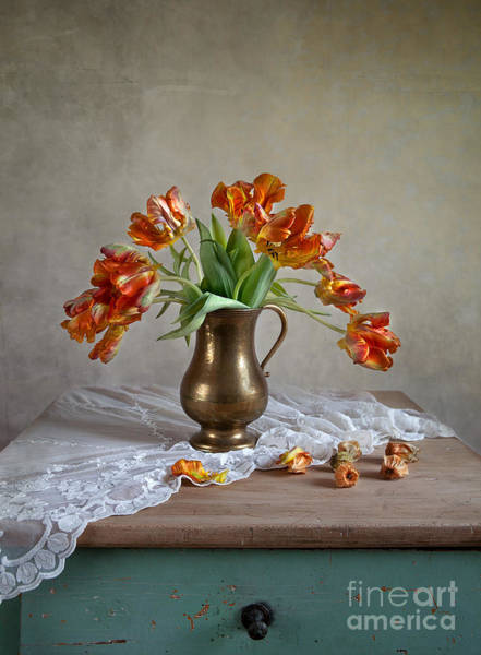 Floral Arrangement Photograph - Still Life With Tulips by Nailia Schwarz