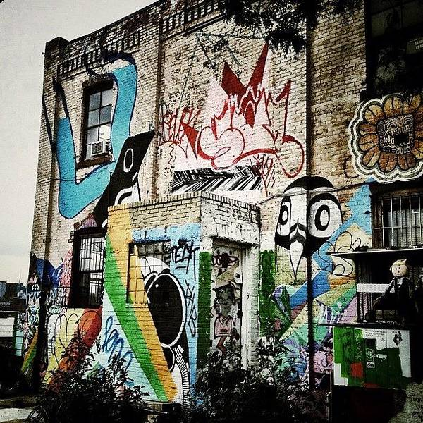Wall Art - Photograph - Williamsburg Graffiti by Natasha Marco
