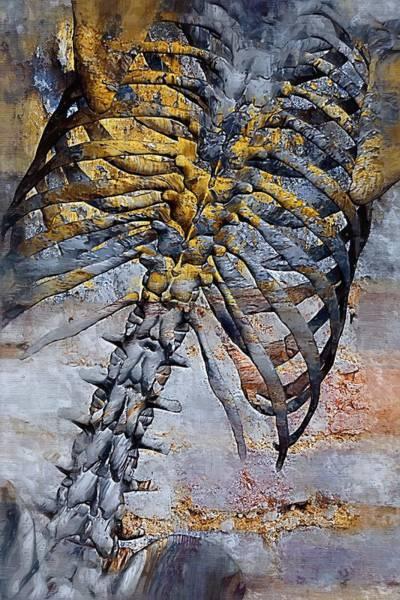 Backache Digital Art - Torso Skeleton by Joseph Ventura