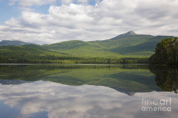 Photograph - Chocorua Lake - Tamworth New Hampshire by Erin Paul Donovan