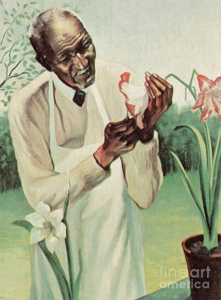 Photograph - George W Carver by Science Source