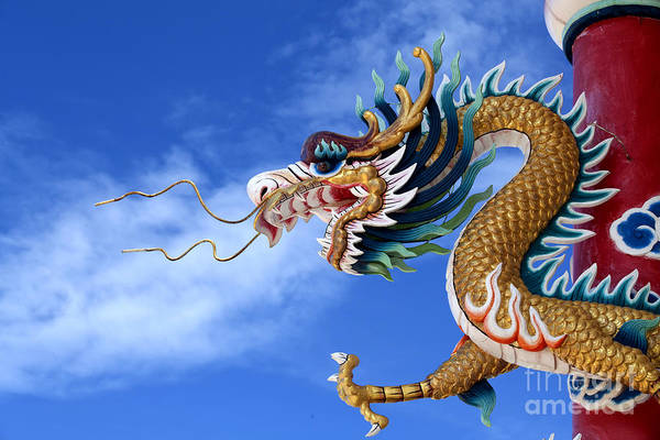 Chinese New Year Photograph - Giant Golden Chinese Dragon by Anek Suwannaphoom