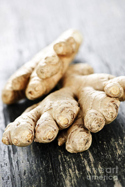 Tubers Photograph - Ginger Root by Elena Elisseeva