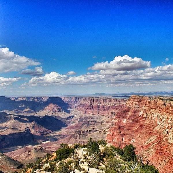 University Wall Art - Photograph - Grand Canyon by Luisa Azzolini