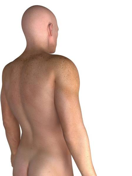 Buttocks Photograph - Male Upper Body, Artwork by Sciepro