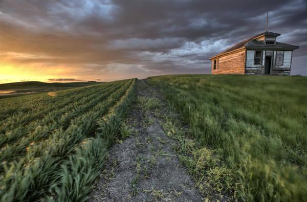 Prairie View Digital Art - Newly Planted Crop by Mark Duffy