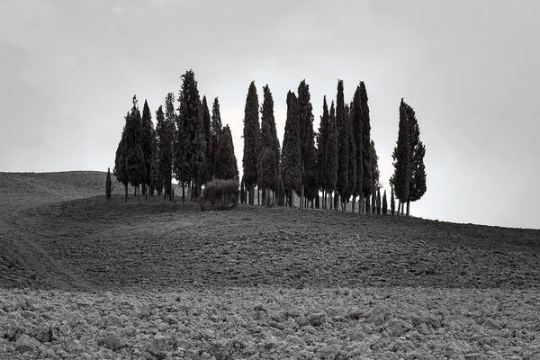 Wall Art - Photograph - Tuscany by Joana Kruse