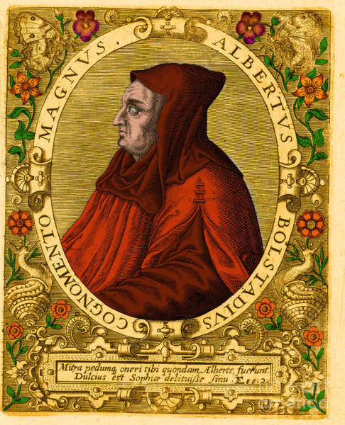 Photograph - Albertus Magnus Medieval Philosopher by Science Source