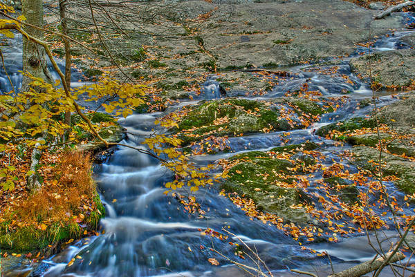 Photograph - Big Hunting Creek Upstream From Cunningham Falls by Mark Dodd