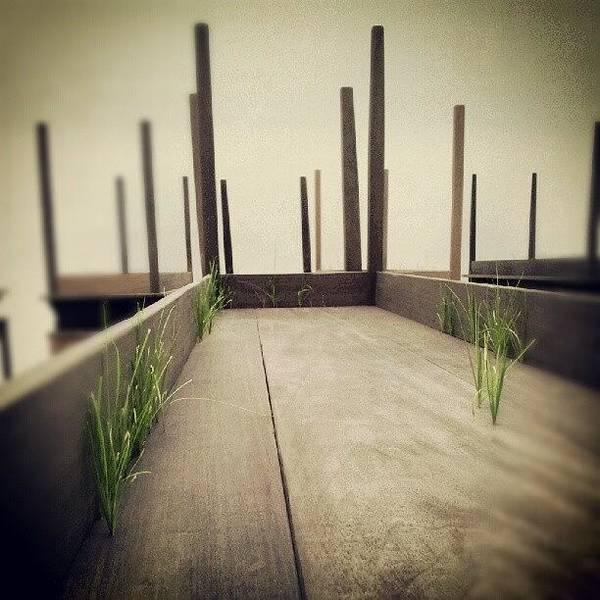 Death Wall Art - Photograph - Instagram Photo by Enrico Di Giamberardino